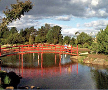 Japanese Gardens at University of Southern QLD